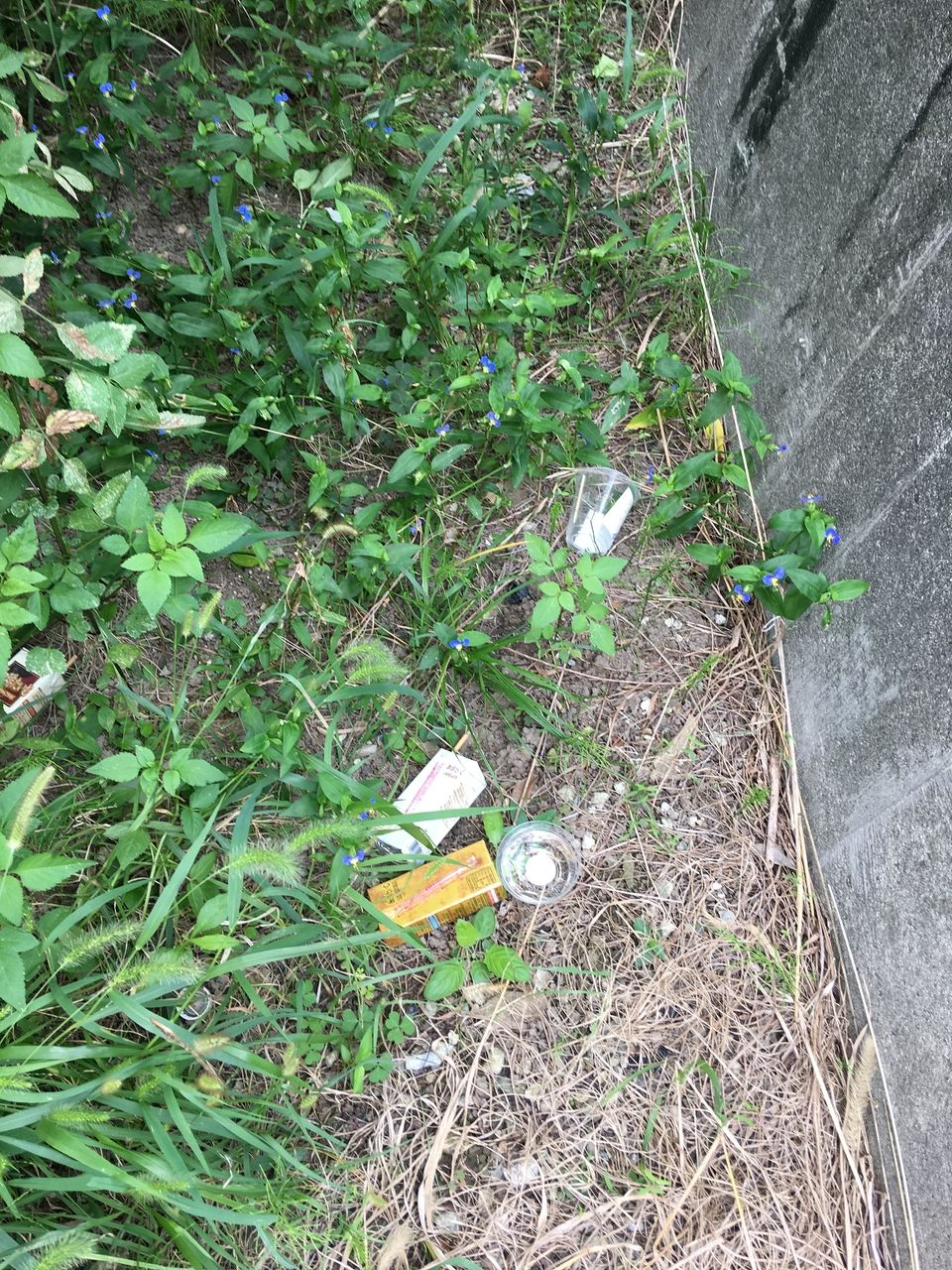 誰かが飲食しそのまま捨てていったゴミ
